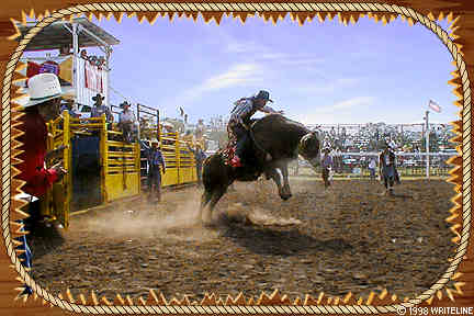 All images Copyright © 1997 - 2000 WriteLine. All Rights Reserved. Cowboy and Bull