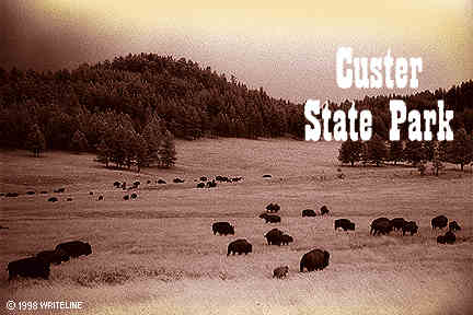 All images Copyright © 1997 - 2000 WriteLine. All Rights Reserved. Bison home on the range