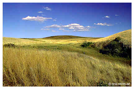 All images Copyright © 1997 - 2000 WriteLine. All Rights Reserved. Blue sky and green hill