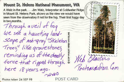 All images Copyright © 1997 - 2000 WriteLine. All Rights Reserved. Western Hemlock postage stamp