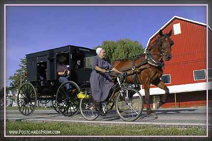 All images Copyright © 1997 - 2000 WriteLine. All Rights Reserved. Amish Horse and Buggy